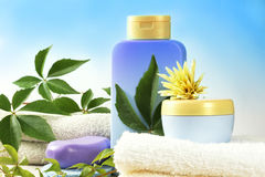 SPA Products. SPA cosmetics, bathroom composition with natural products stock image