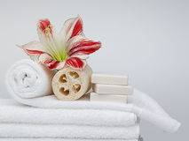 Spa products. A white background stock photos