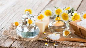 Spa with products of chamomile Stock Photo