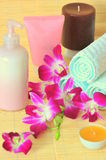 Spa products - composition Royalty Free Stock Photography