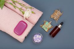 Spa products for facial and body care. Sea salt, homemade soap and oil. Spa products for massage, facial and body care. Natural sea salt, homemade soap, bottle royalty free stock photos