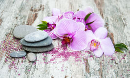 Spa products with orchids Stock Images
