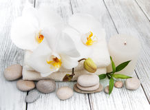 Spa products and white orchids Royalty Free Stock Photo