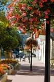 Spa promenade. With color flowers Stock Photo