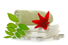 Spa with red lily Stock Images