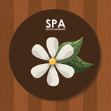 Spa relax Royalty Free Stock Photo