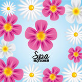Spa relaxation area Stock Photography