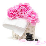 Spa relaxation concept with flower and stones Royalty Free Stock Photo