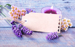 Spa, relaxation and wellness background royalty free stock image