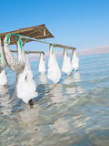 Spa resort of the Dead Sea at Ein Gedi, Stock Images