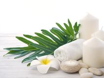 Spa rock Flower white background stock photography
