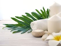 Spa rock Flower white background royalty free stock images