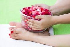 The spa rose bowl Stock Photos