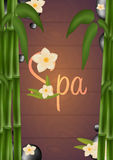 Spa salon Poster with stones and bamboo. Thai Massage. Wood texture. Vector illustration. Royalty Free Stock Images