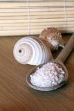 Spa Salt. On a wooden table with shell Stock Image