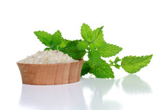 Spa Salt and Fresh Mint Leaves Stock Images
