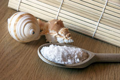 Spa Salt. On a wooden table with shells Royalty Free Stock Images
