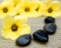Spa scene. With yellow flower Stock Photo