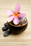Spa Scene. With wooden bowl Stock Image