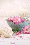 Spa scene with  chrysanthemum flowers in water Stock Images