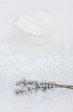 Spa, Scented Sea salt, Selective focus Royalty Free Stock Photography