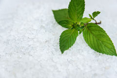 Spa, Scented Sea salt, Selective focus stock images