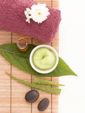 Spa scrub and treatment wiht salt, aloe vera on wood white backg Royalty Free Stock Images