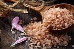Spa. Sea salt royalty free stock photos