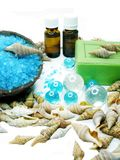 Spa sea shells salt shampoo shower gel and creme Royalty Free Stock Images