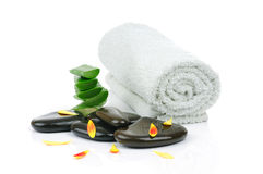 Spa set Royalty Free Stock Photo