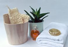 Spa set with aloe and massage oil Royalty Free Stock Photos