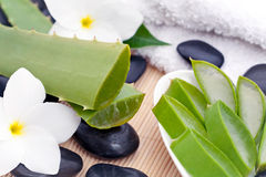 Spa set with Aloe vera Royalty Free Stock Photos