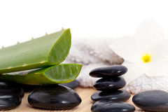 Spa set with Aloe vera Stock Photo