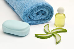 spa set aloe vera product Stock Images