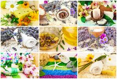 Spa set with aroma oil, sea salt, flowers, lavender, plants, tow Royalty Free Stock Image