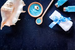 Spa set with blue sea cosmetics for bath and shell on dark background top view mock-up. Spa set with blue sea cosmetics for bath and shell on dark desk Royalty Free Stock Image