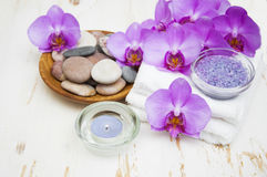 Spa set Royalty Free Stock Photography