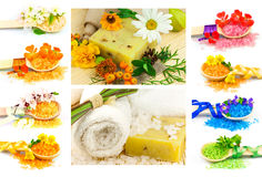 Spa set with color sea salt in wooden spoon, flowers, plants, to Royalty Free Stock Photo