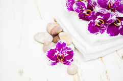 Spa set Royalty Free Stock Images