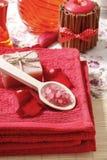Spa set: scented candle, sea salt, liquid soap Stock Image
