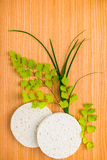 Spa set of sponge with green branches fern on wood background Royalty Free Stock Photo