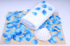 Spa set, towel and conch. Spa preaparation - white towel covered with blue petal Stock Image
