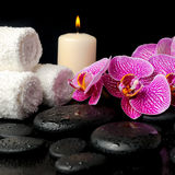 Spa set of zen stones with drops, blooming twig Stock Photos