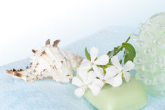 Spa setting with a blue towel. And white flowers Stock Photos