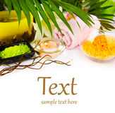 Spa setting with candle, salt and palm branch. Stock Photos