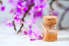 Spa setting with cosmetic cream, gel and purple orchid on white wooden table background. Stock Photography