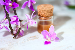 Spa setting with cosmetic cream, gel and purple orchid on white wooden table background. Royalty Free Stock Photo
