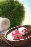 Spa setting with flower royalty free stock images