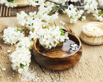 Spa Setting with Flower Blossom in Wooden Water Bowl Royalty Free Stock Photography