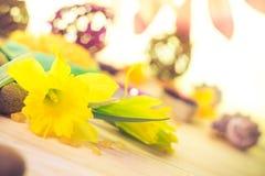 Spa setting flower Zen stones Stock Photography